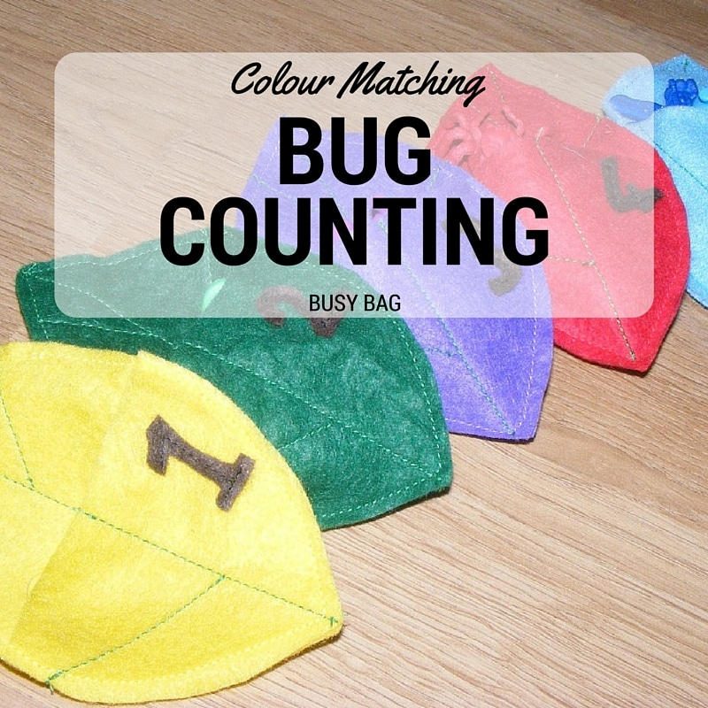 Bug Counting and Colour Match Busy Bag