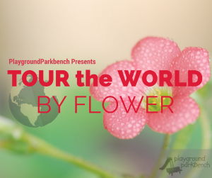 PGPB Tour the World by Flower Small (1)