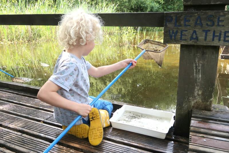 pond dipping grangemouth family days out in Scotland