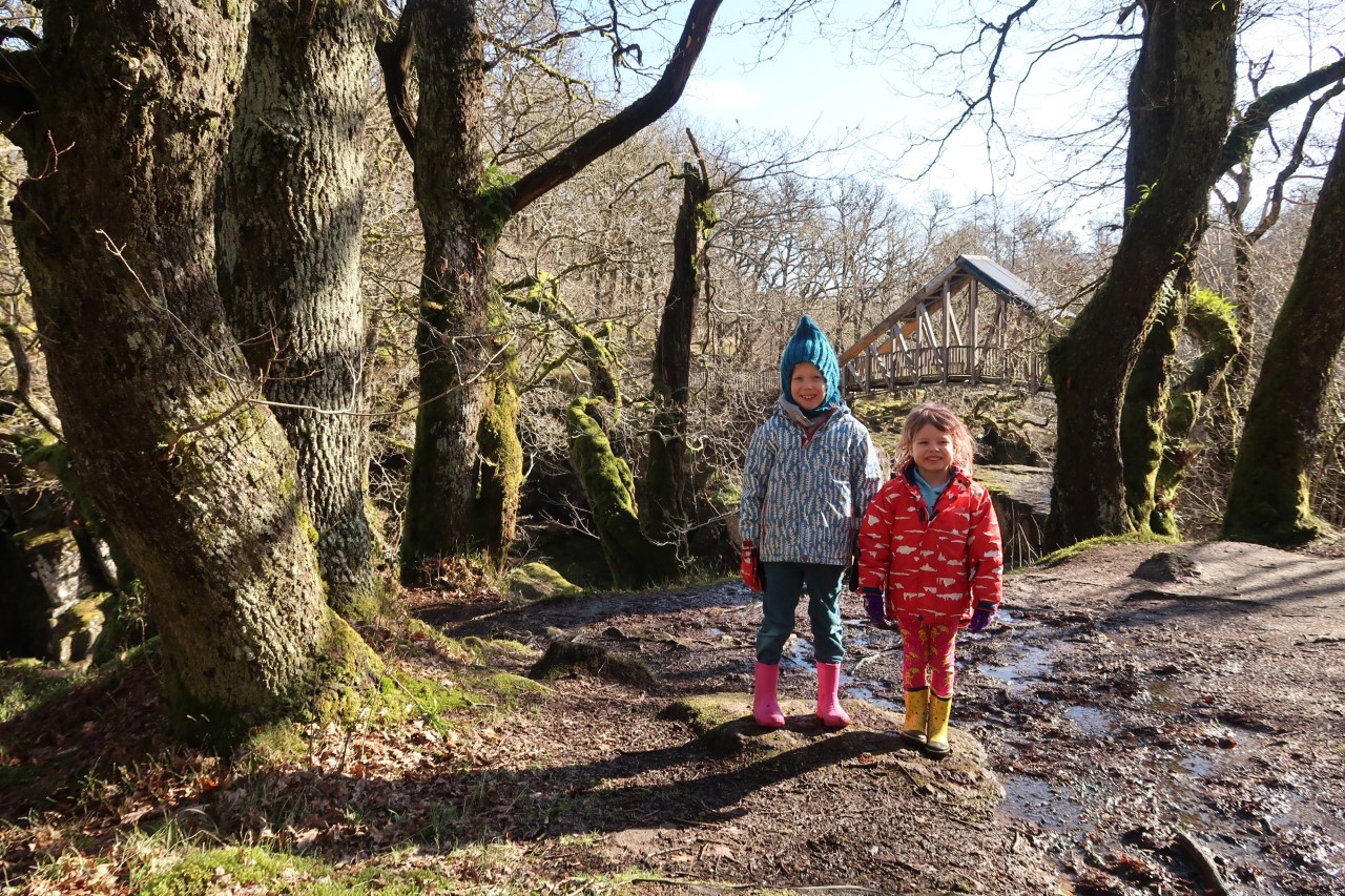 children at Bracklinn falls