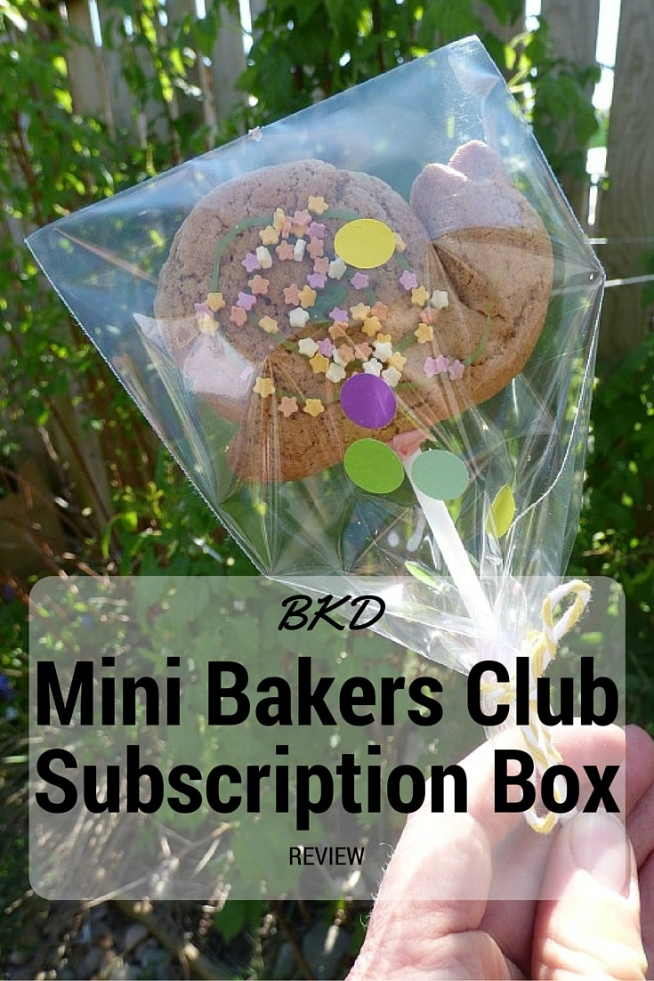 kids baker subscription