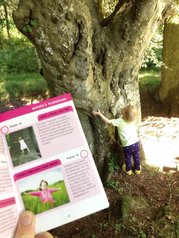 i-spy countryside guide review