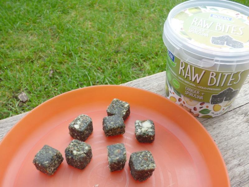 Raw Bites Superfood Snack Review
