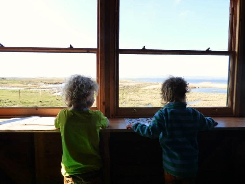 bird watching kids