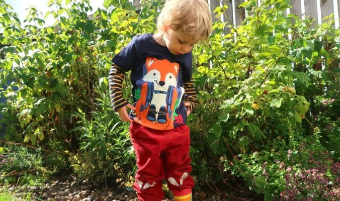 fox trousers