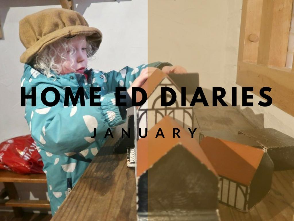 Home Education Diaries – January