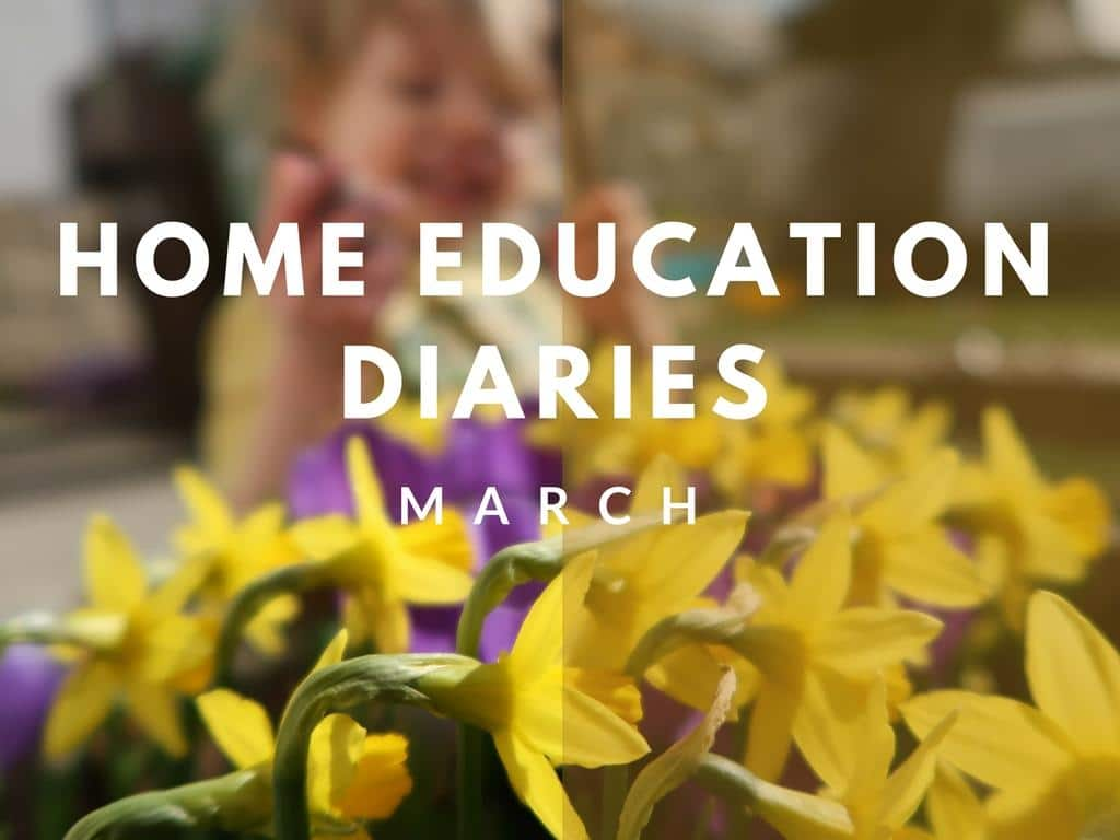 Home Education Diaries – March