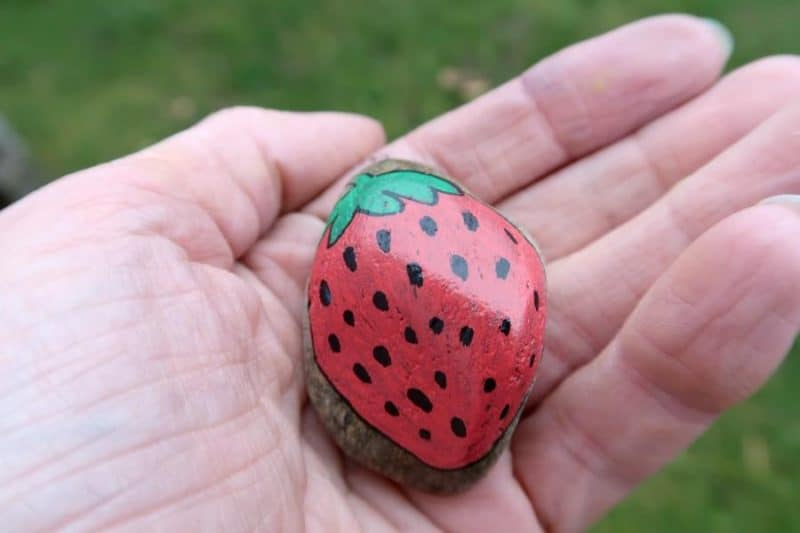 painted strawberry rock