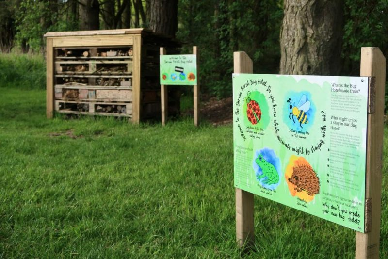 bug hotel at Darwin forest