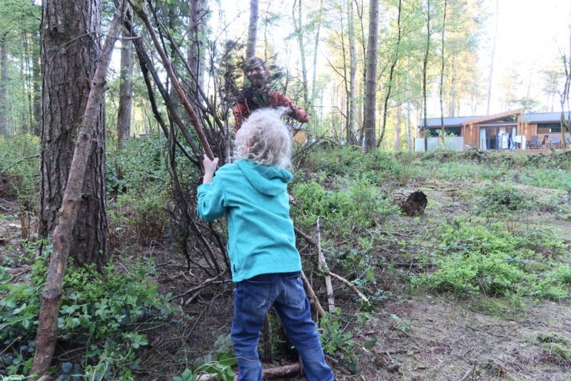 building a den in the woods at Darwin Forest