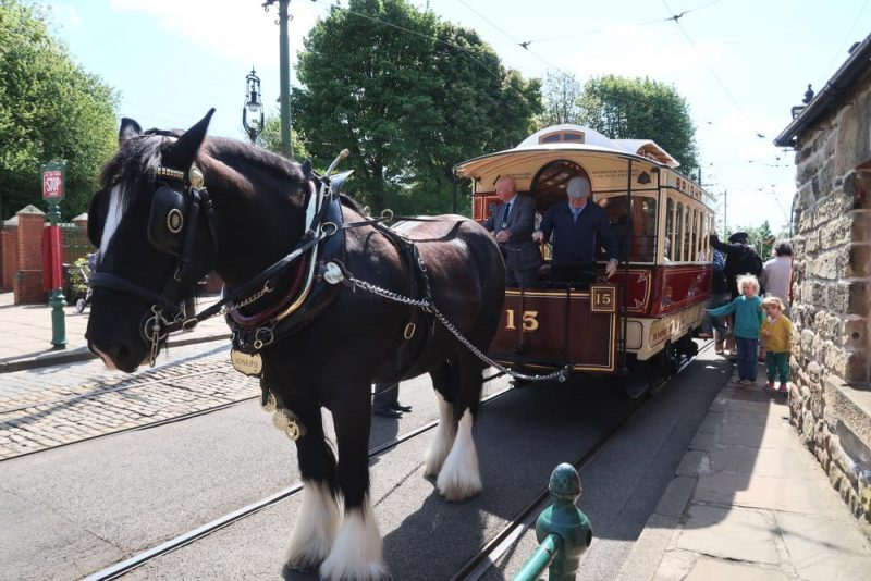 horse pulling an old tram Crich tram museum