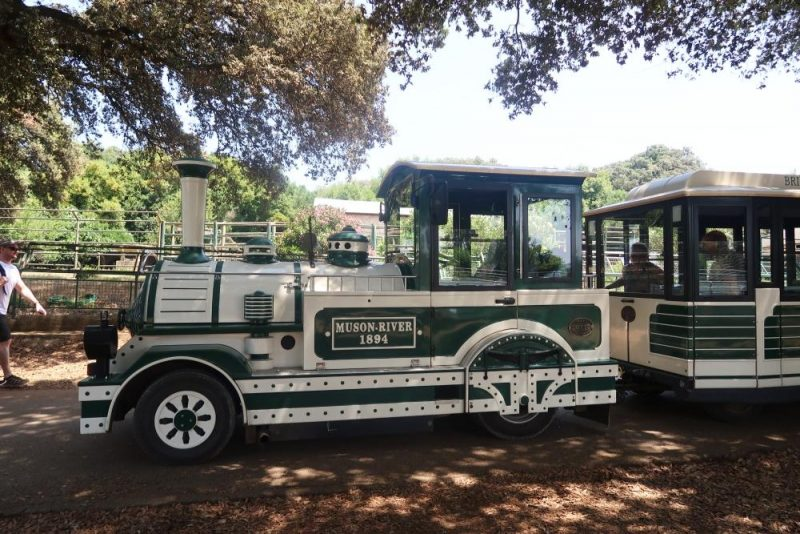 road train at Brijuni safari park