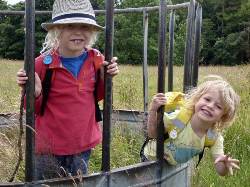 children in cattle feeder cage