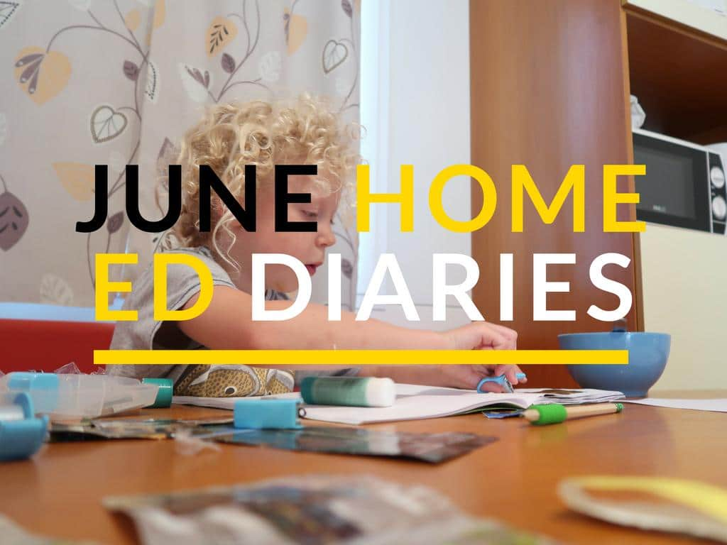 home ed diaries
