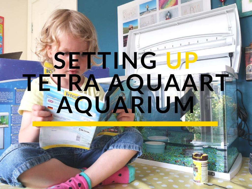 First Time Fish Owners: Tetra AquaArt Aquarium Discovery