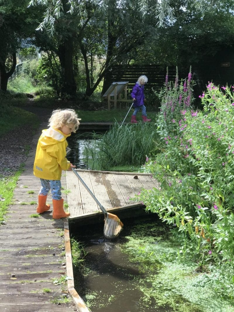 pond dipping in Scotland