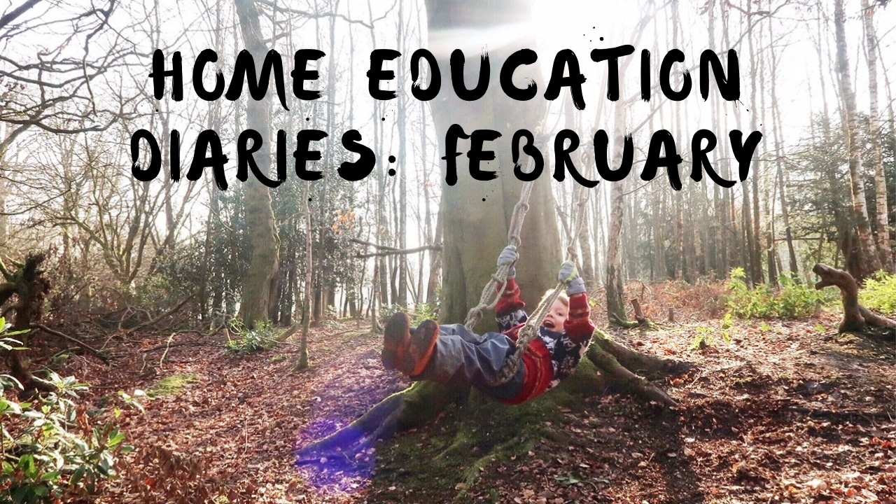 February Home Education Diaries 2019