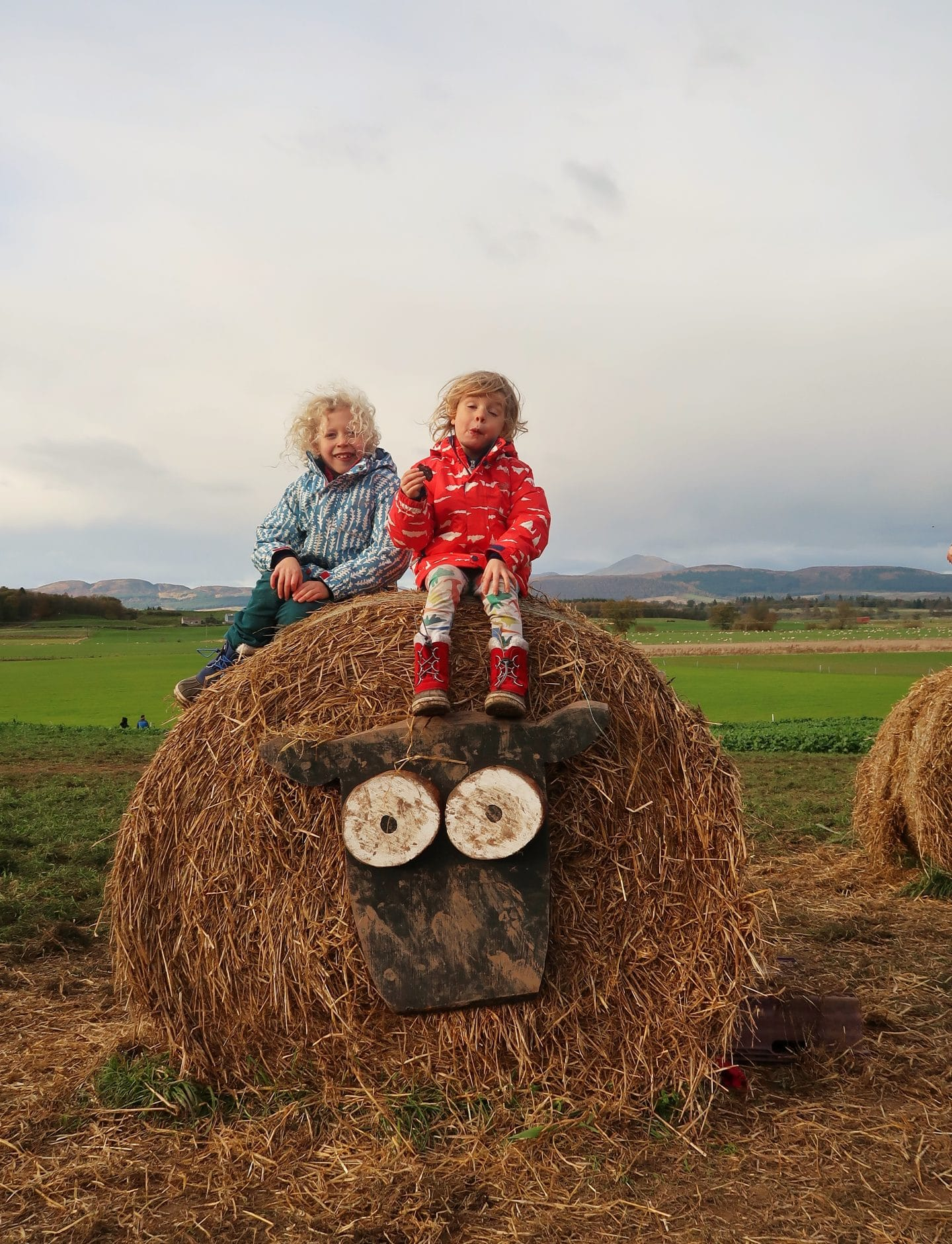 children on top of sheep hay bale