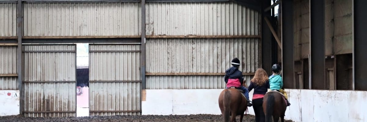 A New Hobby For The Kids?  Horse Riding Lessons!