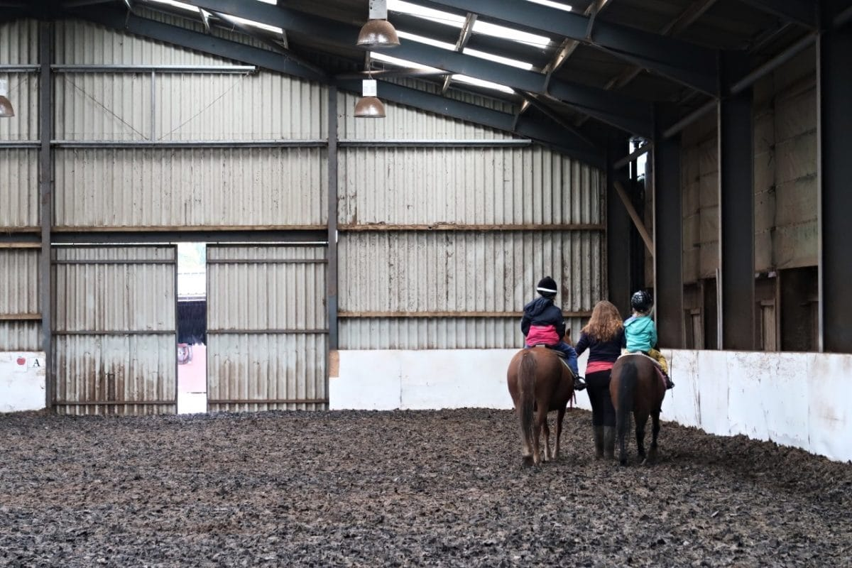 horse riding lesson chidlren