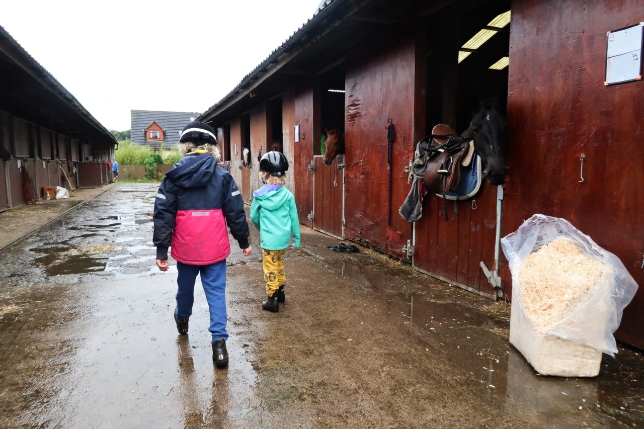 walking through the stables