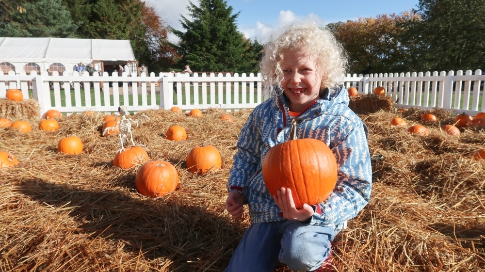 child holding a pumpkin in a patch