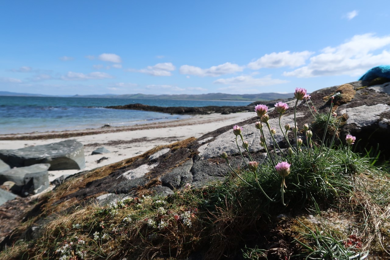 Gigha beaches
