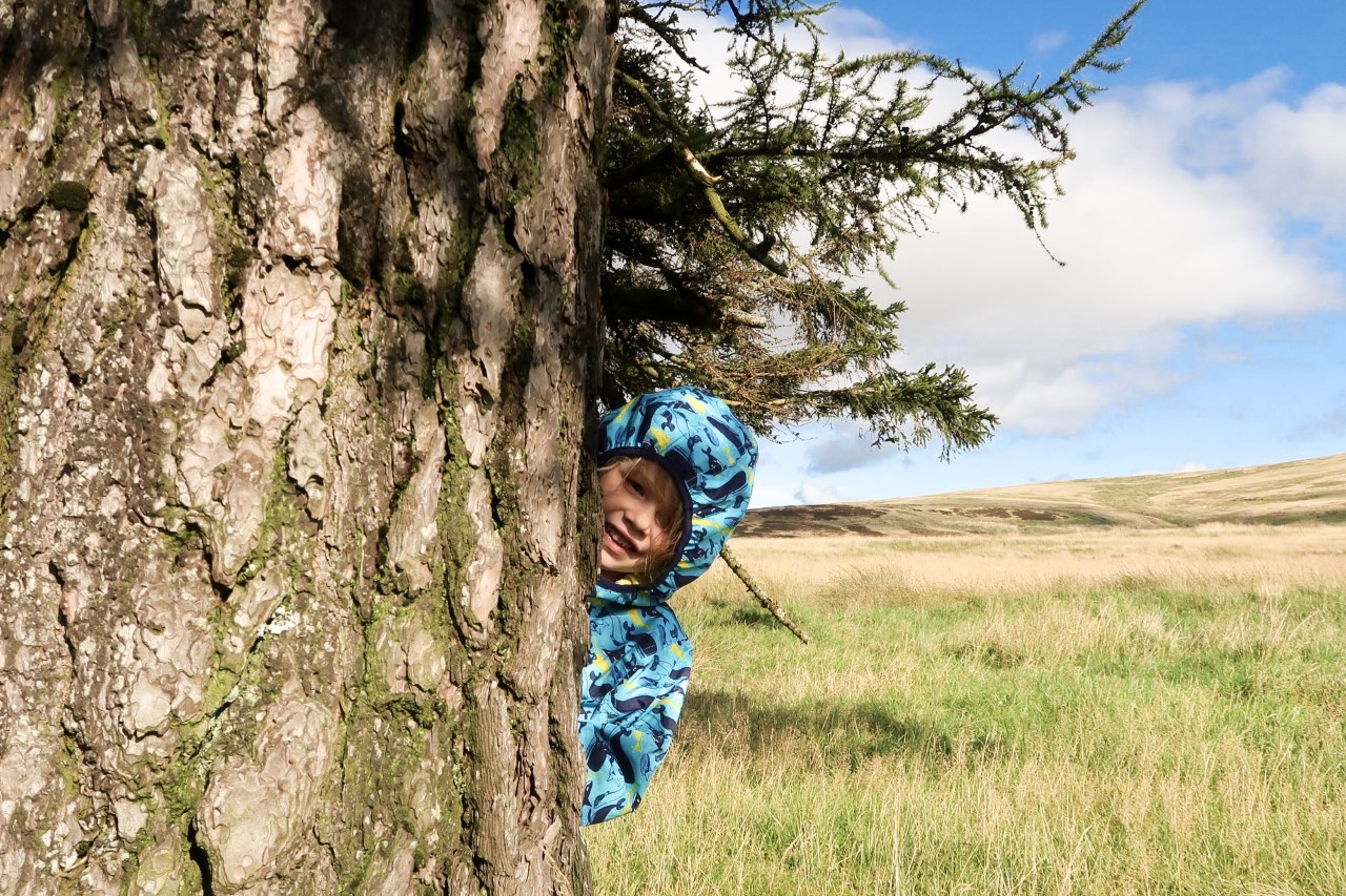 child peaking out from behind tree