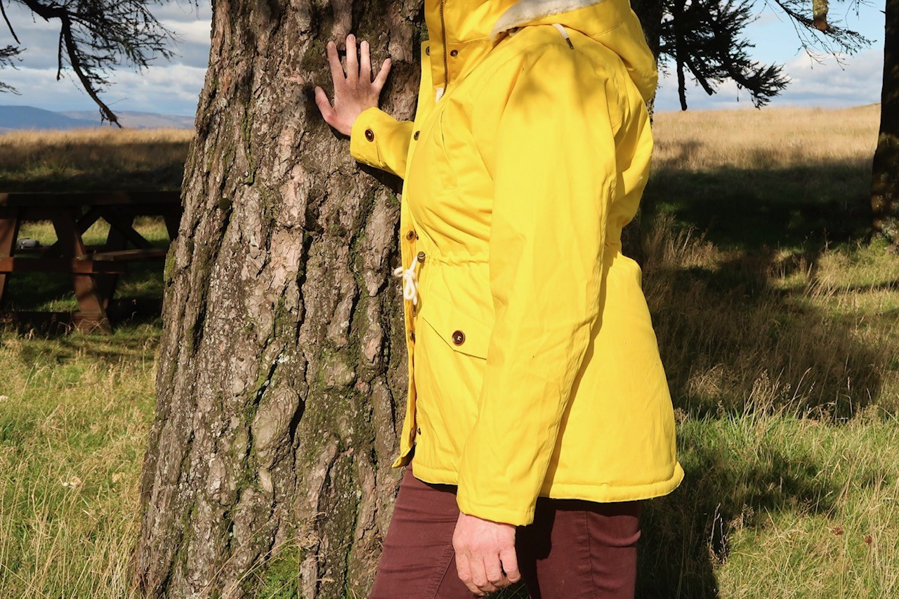 yellow coat in woods