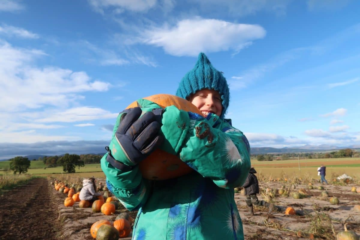 child carrying a pumpkin wrapped up for winter