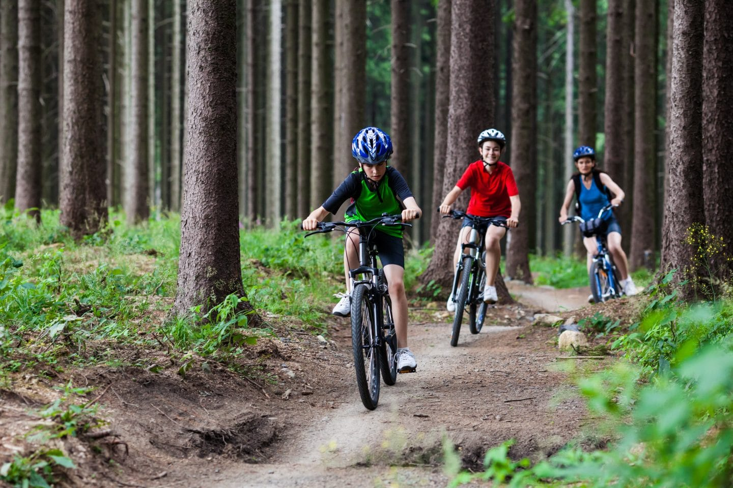 family cycling in forest