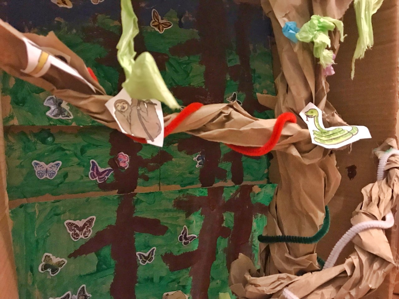rainforest cardboard model