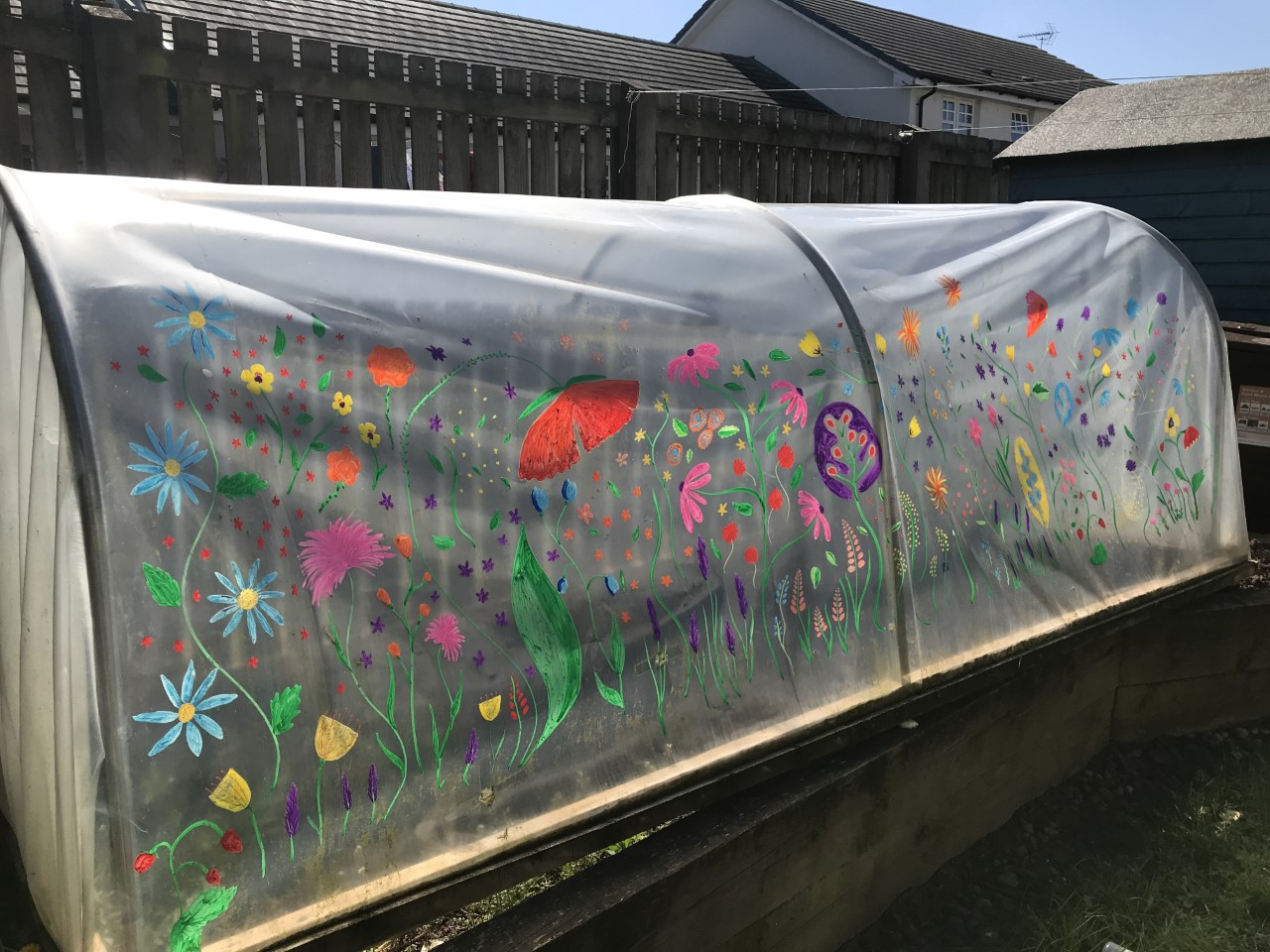 painted polytunnel