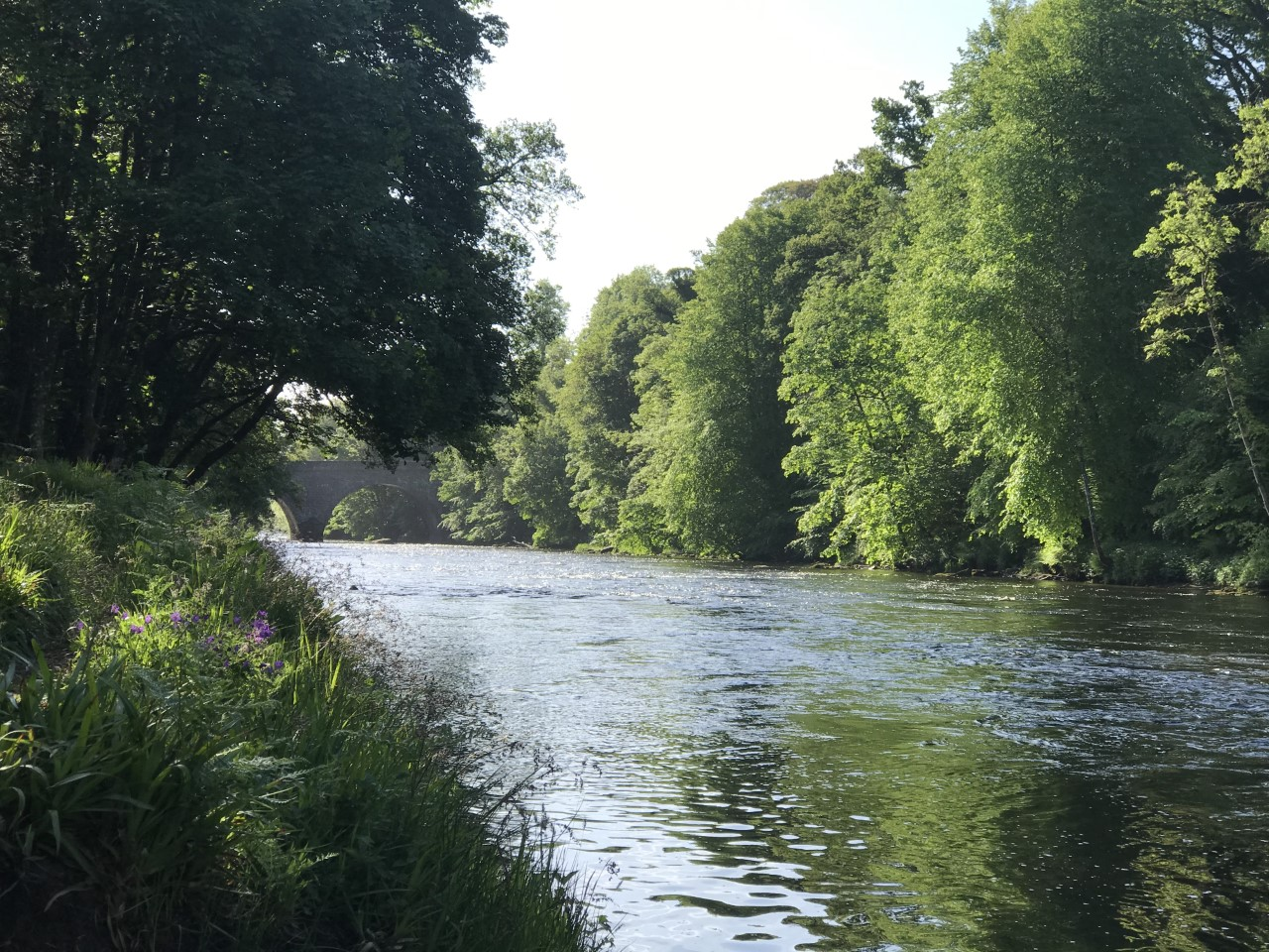 river teith at Doune