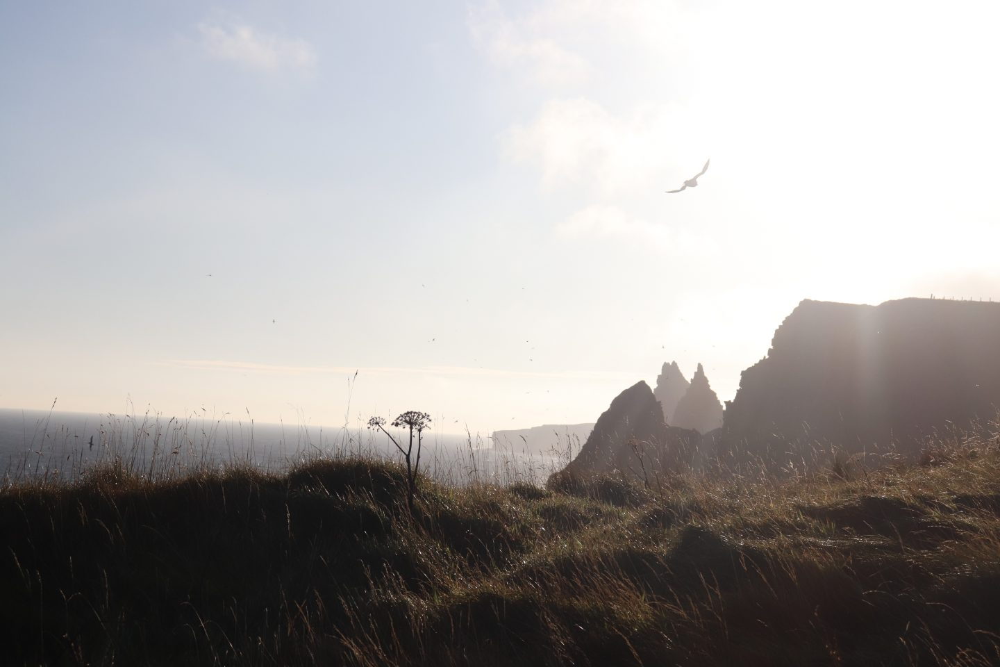 Duncansby Head Sea Stacks