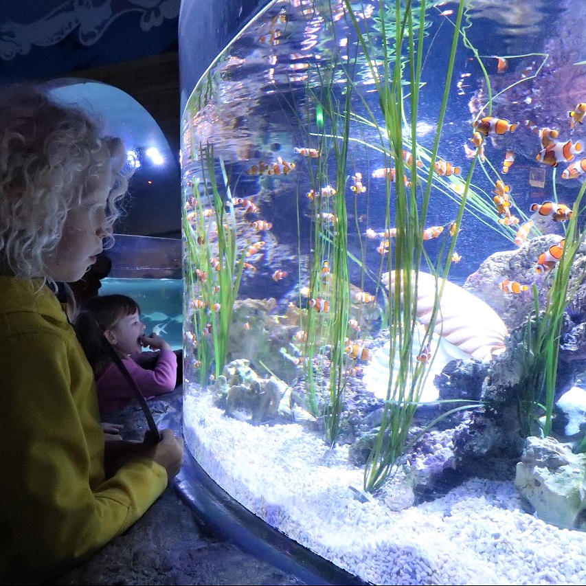 family attractions in Scotland